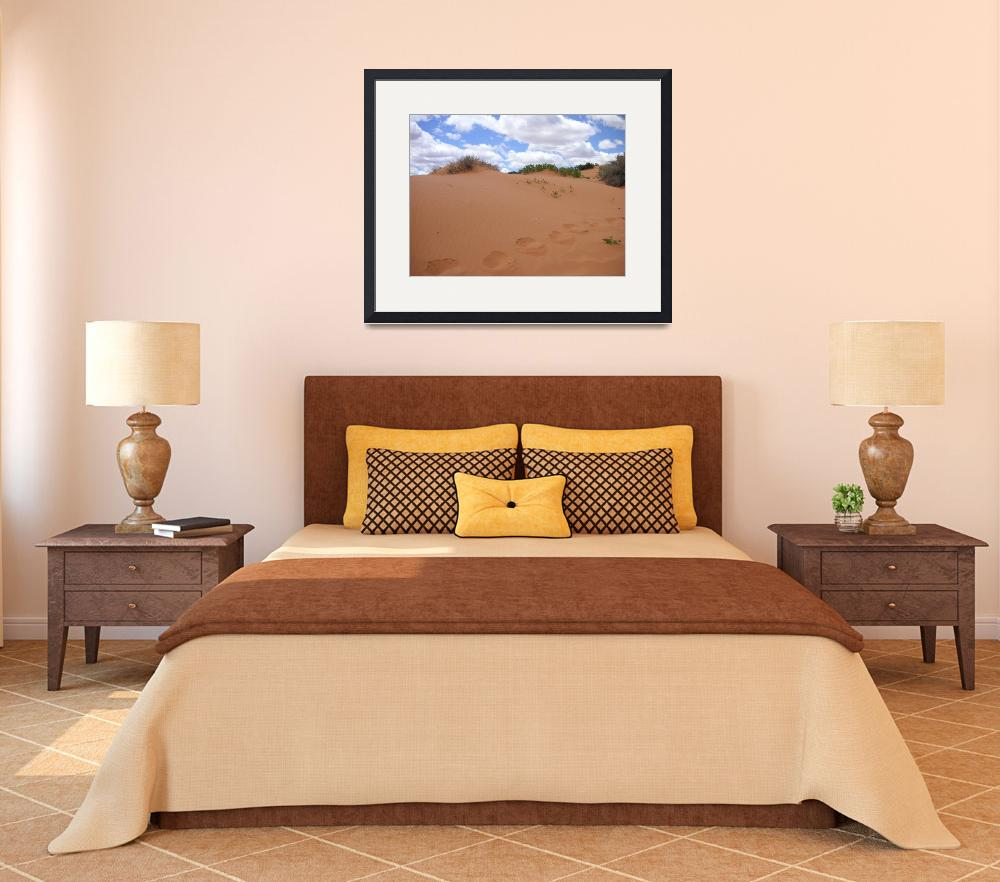 """""""Sand Dunes&quot  (2007) by rbagwell"""
