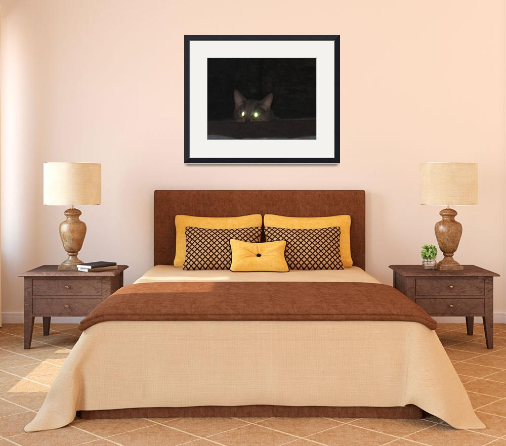 """""""kitty at night&quot  (2009) by MPMPatrick"""