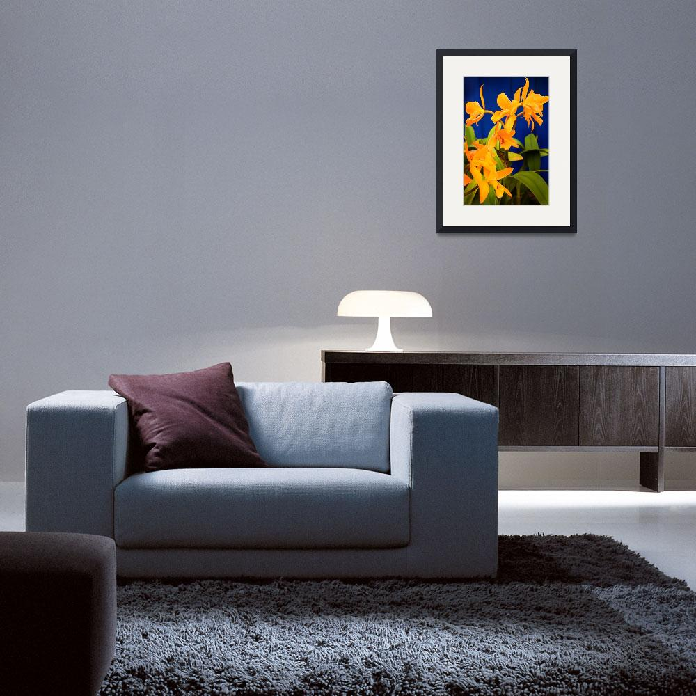 """""""Yellow Orange Orchids with Blue Wall&quot  (2008) by stephenbmack"""