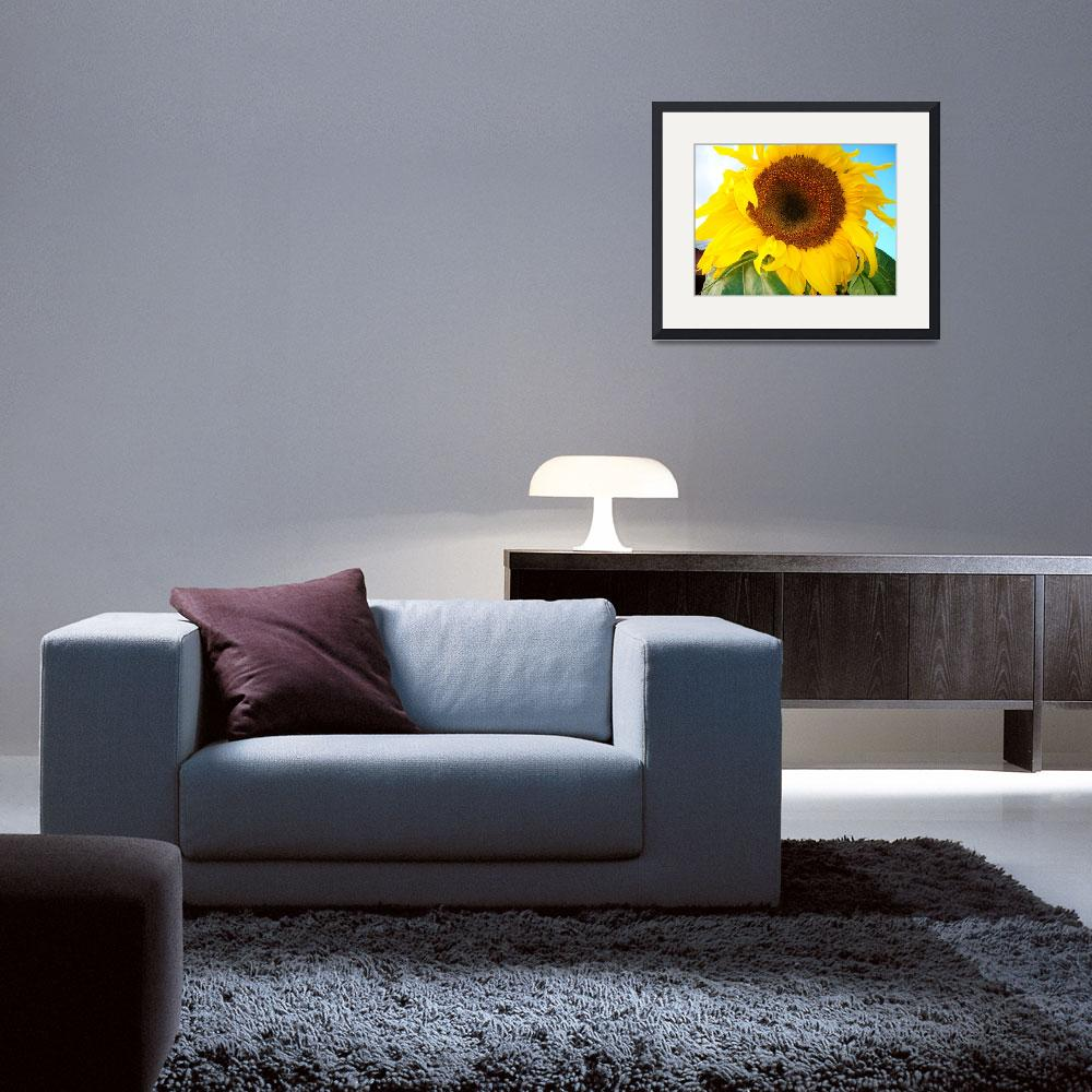 """""""Giant Sunflower&quot  (2013) by StephanieBrower"""