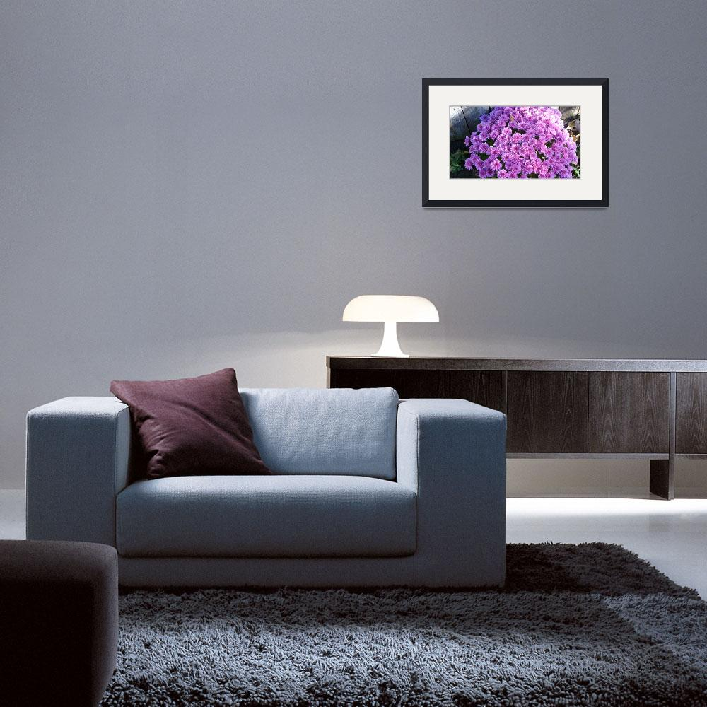 """""""Purple Daisies&quot  (2012) by lizmix"""