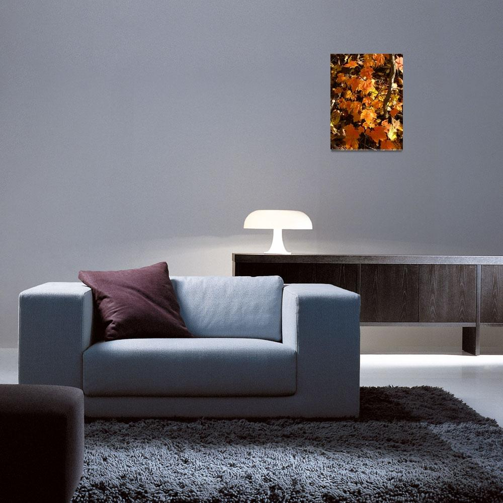 """""""Autumn time&quot  (2008) by Albertphoto"""