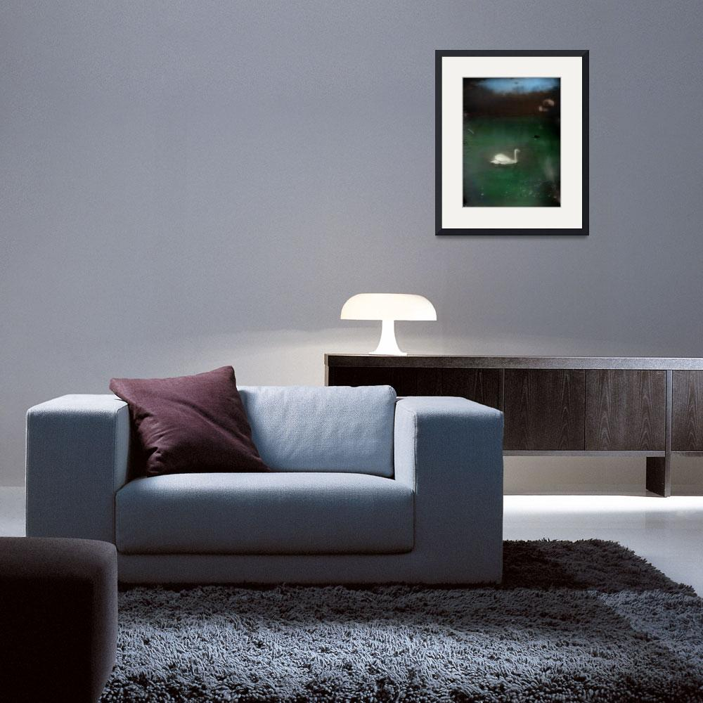 """""""swan in cove color glass photograph""""  (2013) by jnanian"""
