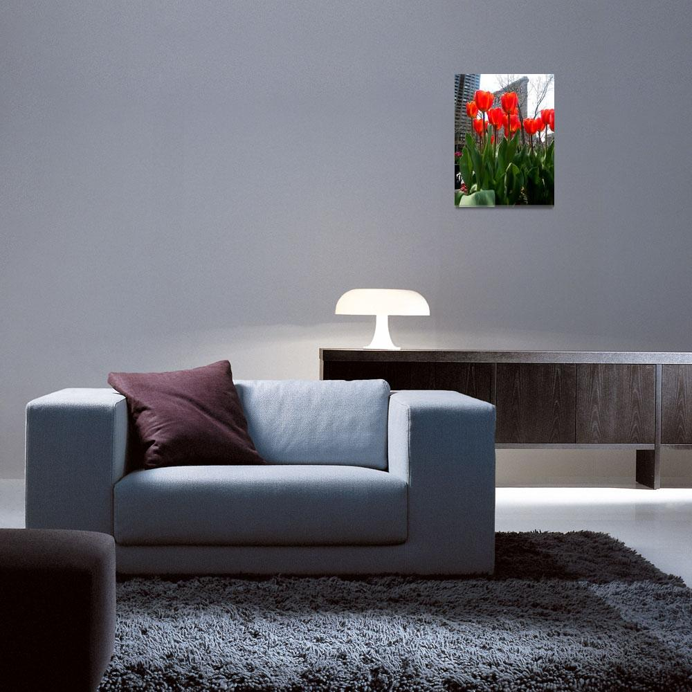 """""""Red Tulips In Manhattan 3""""  (2011) by ShaneWells"""