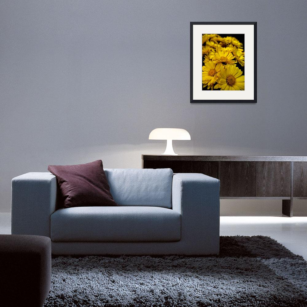 """Yellow Flowers""  (2011) by DanielK"