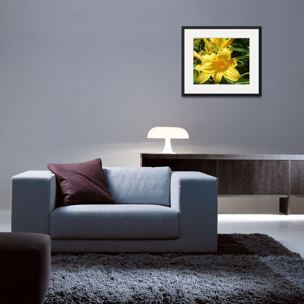 """""""Yellow Lilly""""  (2014) by Thessalonians"""
