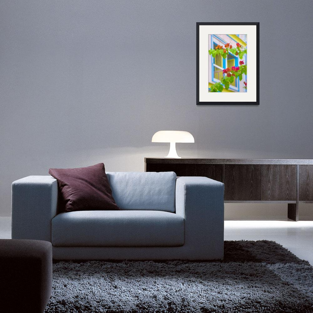 """""""Colored Flowers in Front ot Windows House Print""""  (2015) by danfleitesart"""