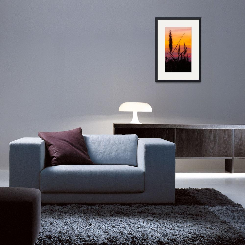 """Autumn sunset&quot  (2011) by DanielK"