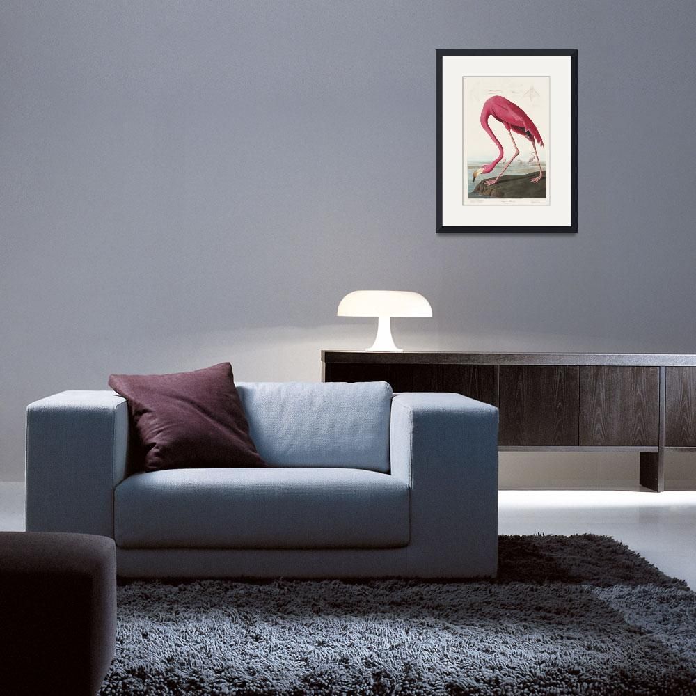 """""""Pink Flamingo from Birds of America""""  by FineArtClassics"""
