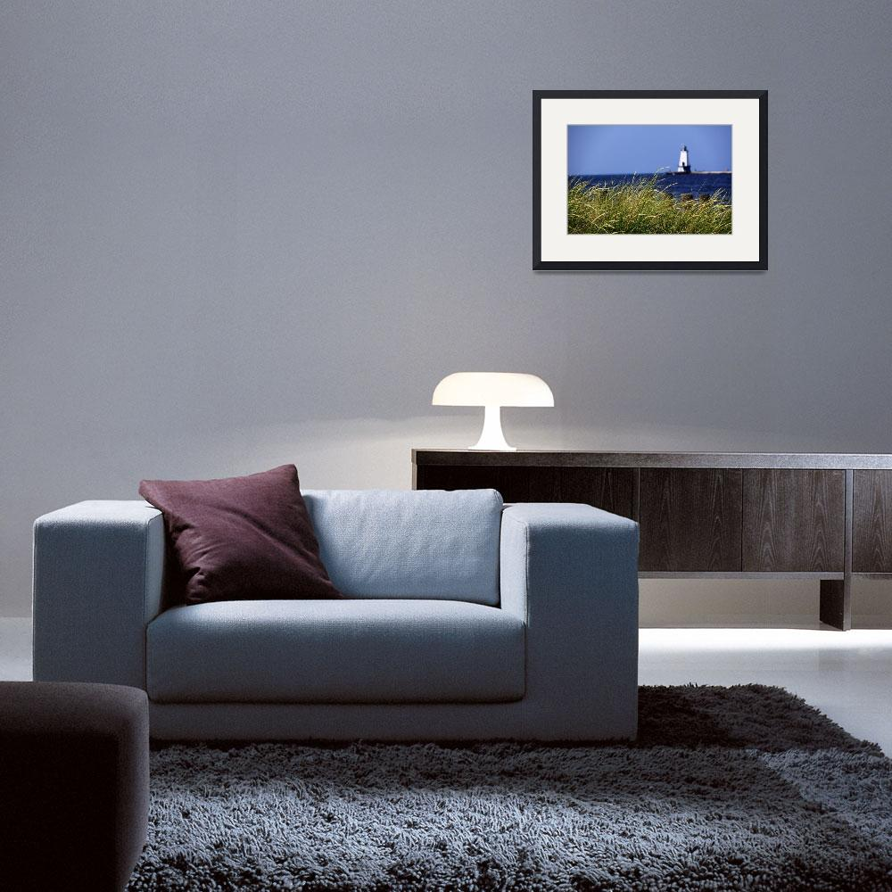 """""""Dune Grass Perspective""""  (2009) by sterk"""