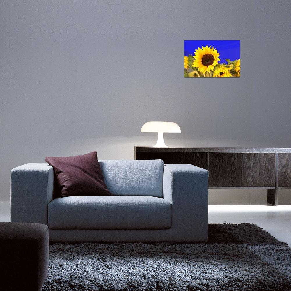 """""""Sunflower Solace&quot  by marywhitmer"""