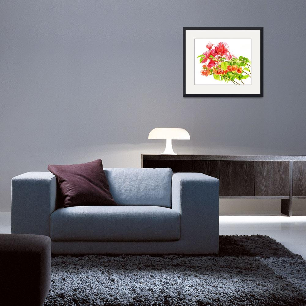 """""""Branch of Bougainvillea white background""""  (2012) by Pacific-NW-Watercolors"""