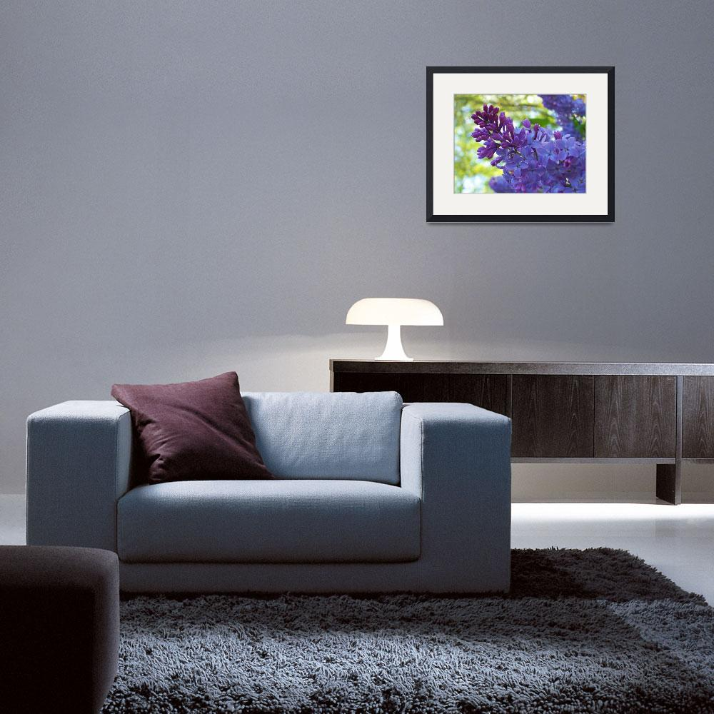 """""""Lilac&quot  (2008) by kita"""