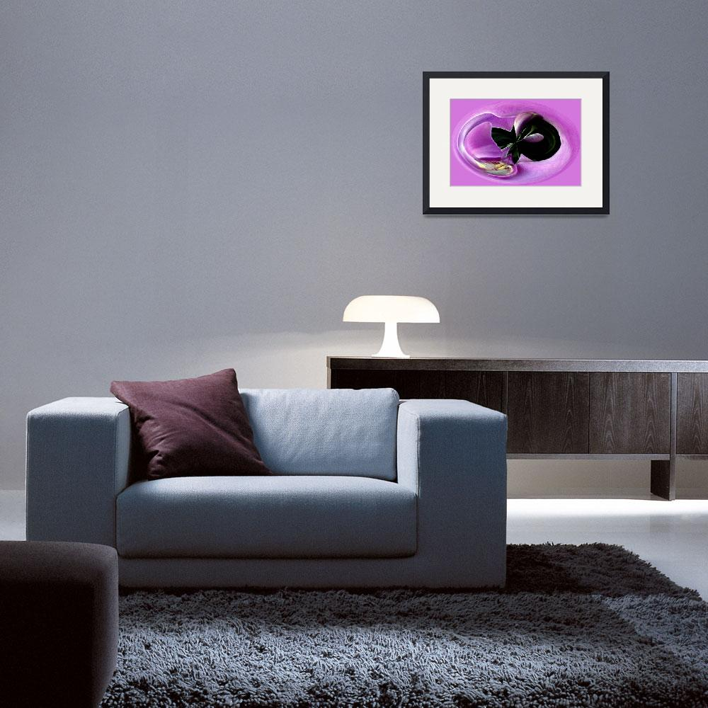 """""""ORCHID 1626""""  by berraha"""