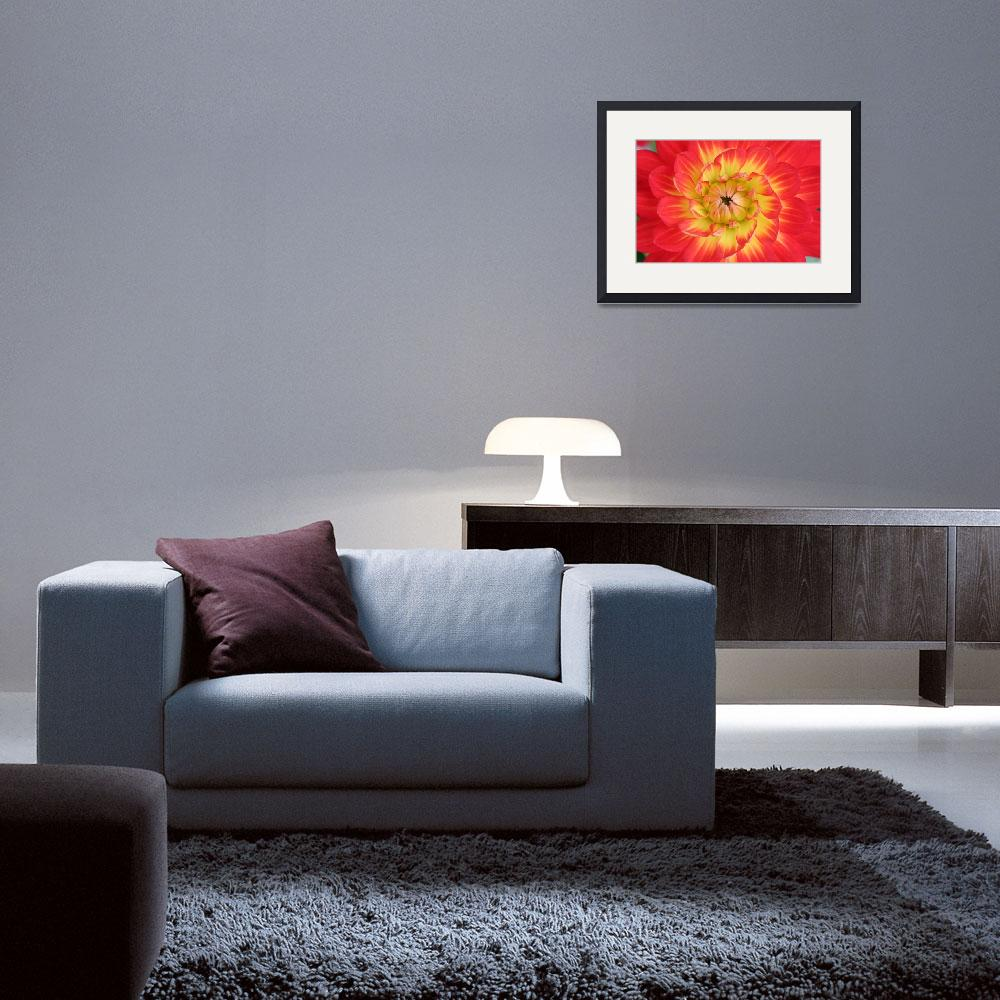 """""""Swirl of Color&quot  (2007) by arthill"""