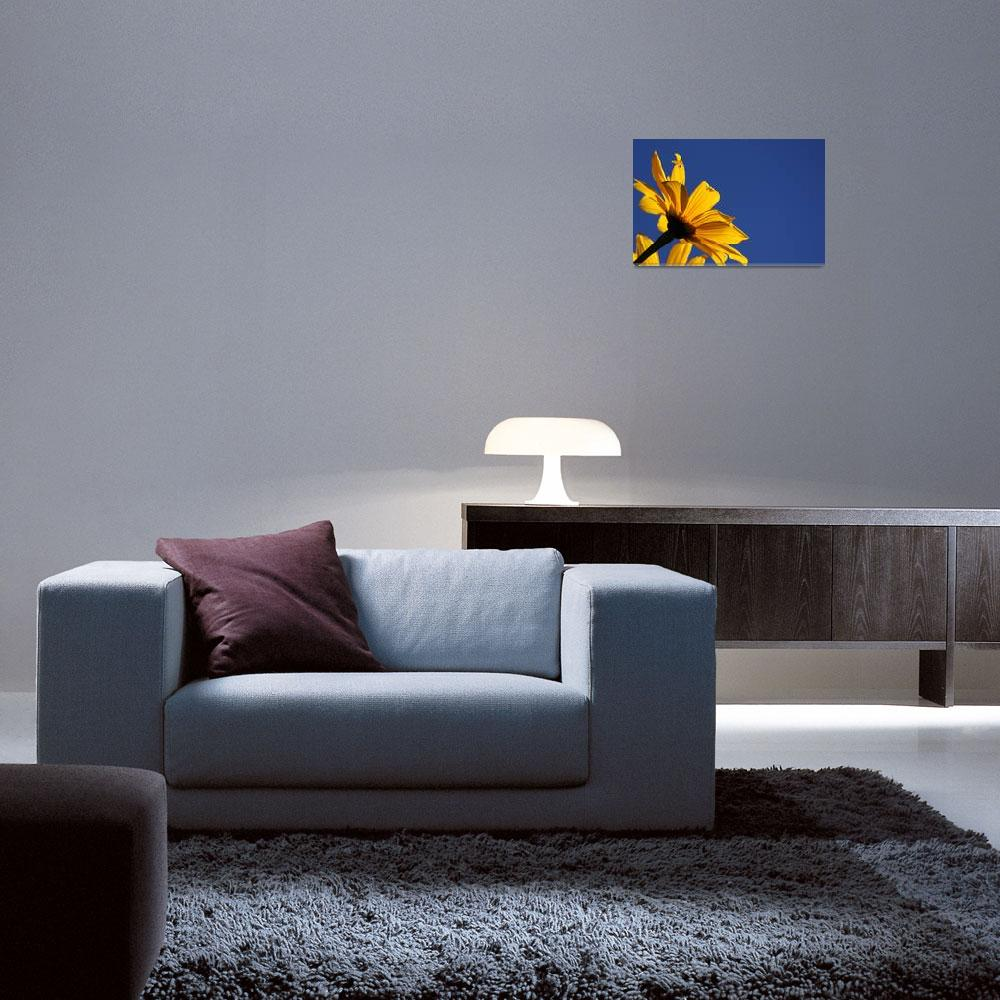 """""""Yellow Flower&quot  (2008) by MnMCarta"""