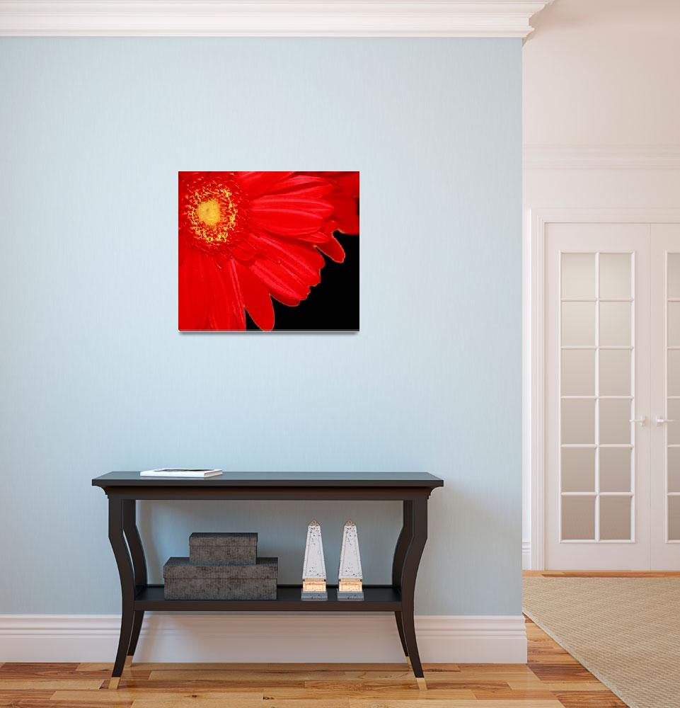 """""""Red and Gold&quot  (2009) by rayjacque"""