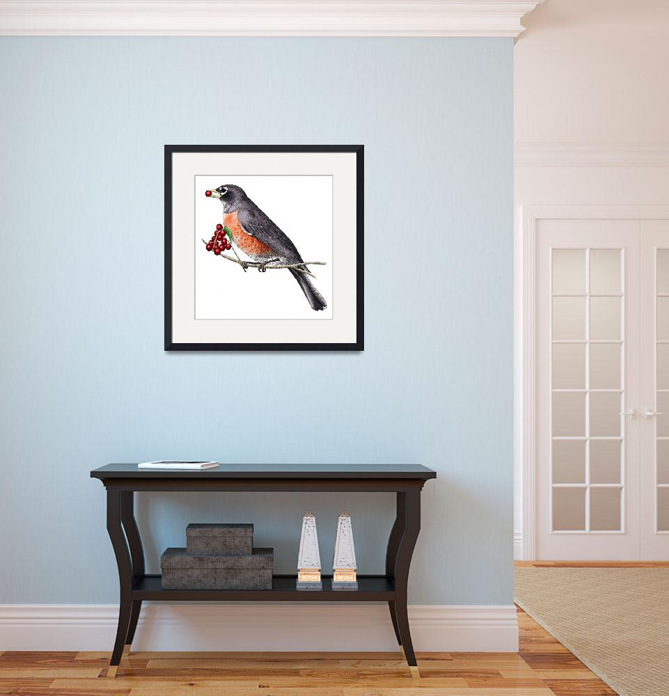 """""""American Robin&quot  by inkart"""
