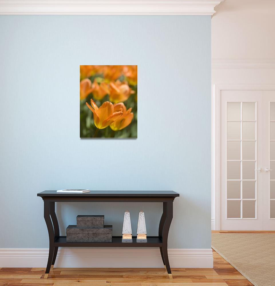 """Bloom #AD1691""  by shankar"