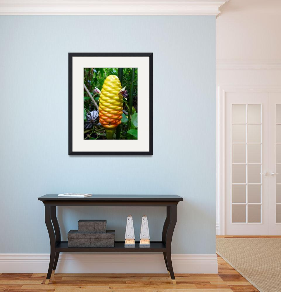 """""""Beehive Ginger&quot  (2012) by joeyartist"""