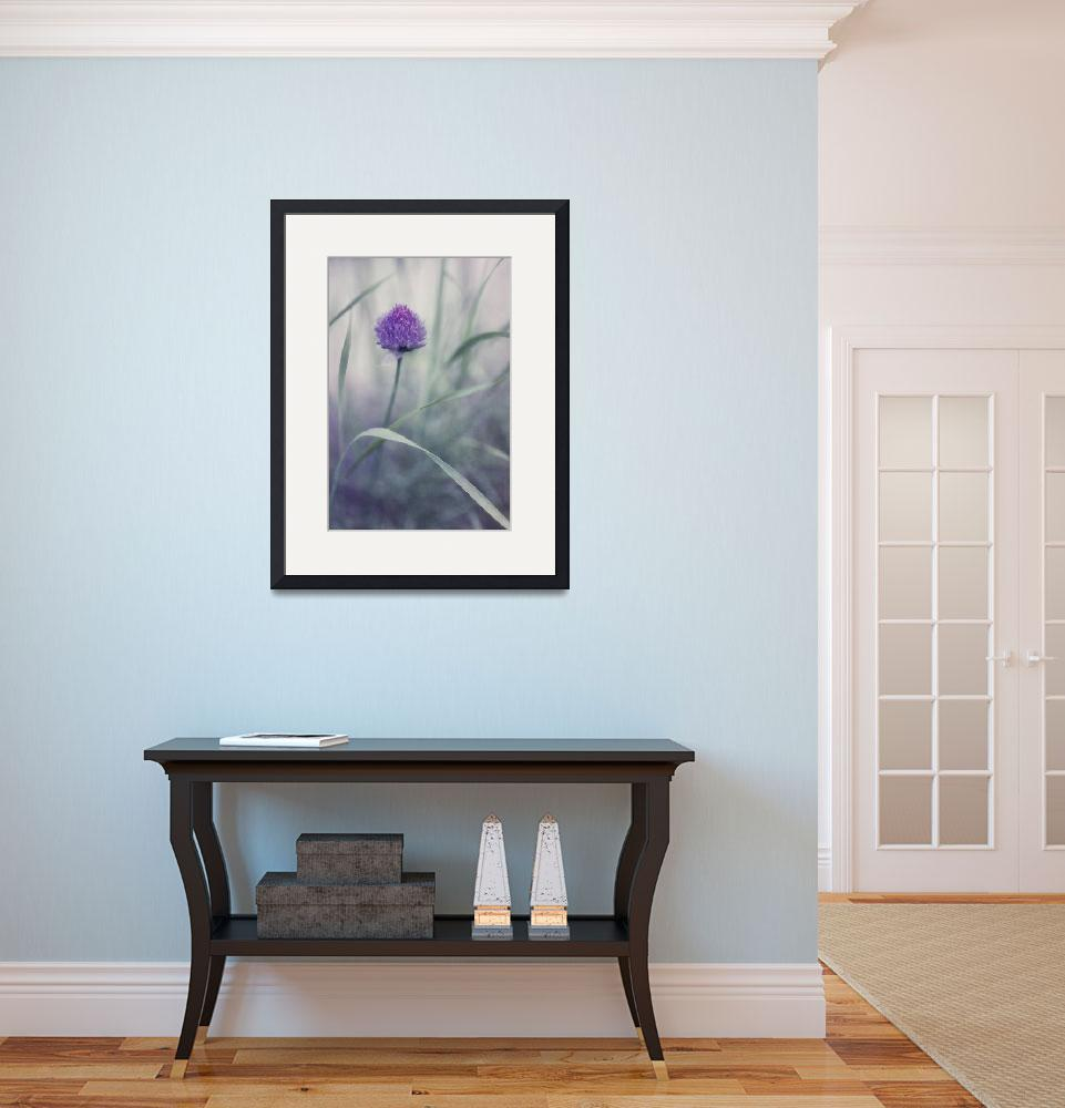 """""""flowering chive&quot  by Piri"""