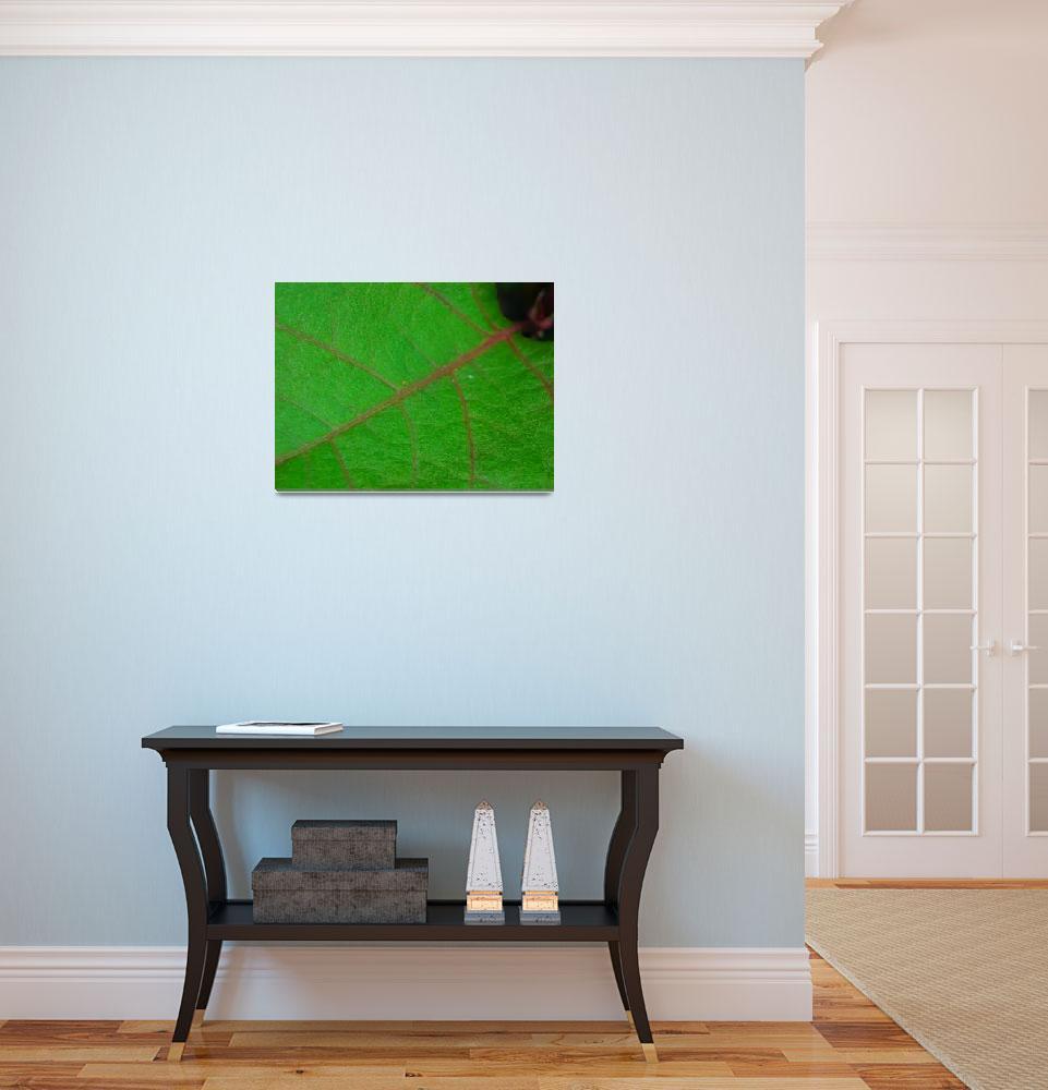 """Green Leaf&quot  (2008) by DavidVan"