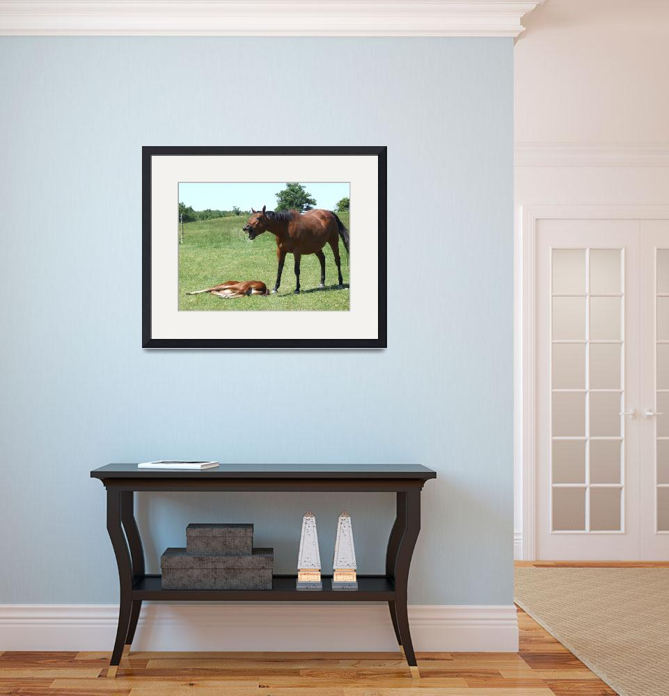 """Horse talk""  (2009) by Hartphotography"