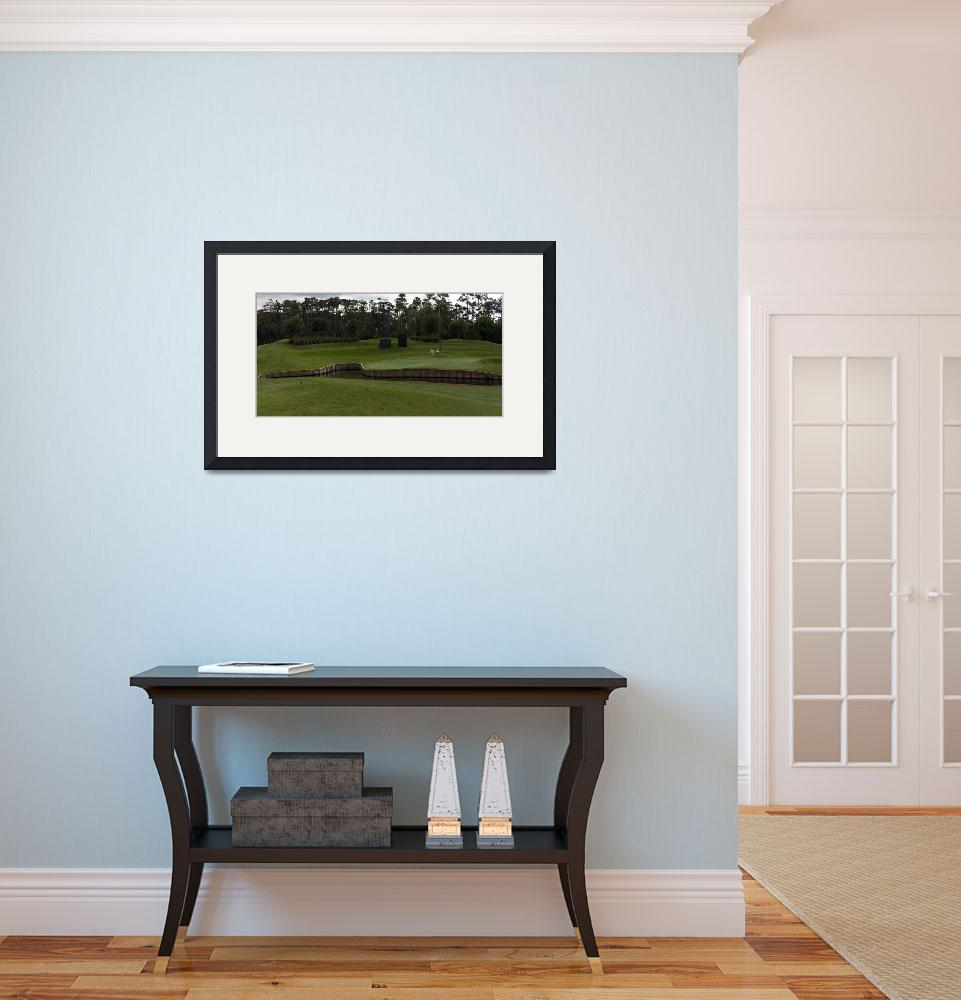 """""""TPC Sawgrass Golf Course Hole 4 Photo 4 Wide&quot  (2013) by Richimage"""