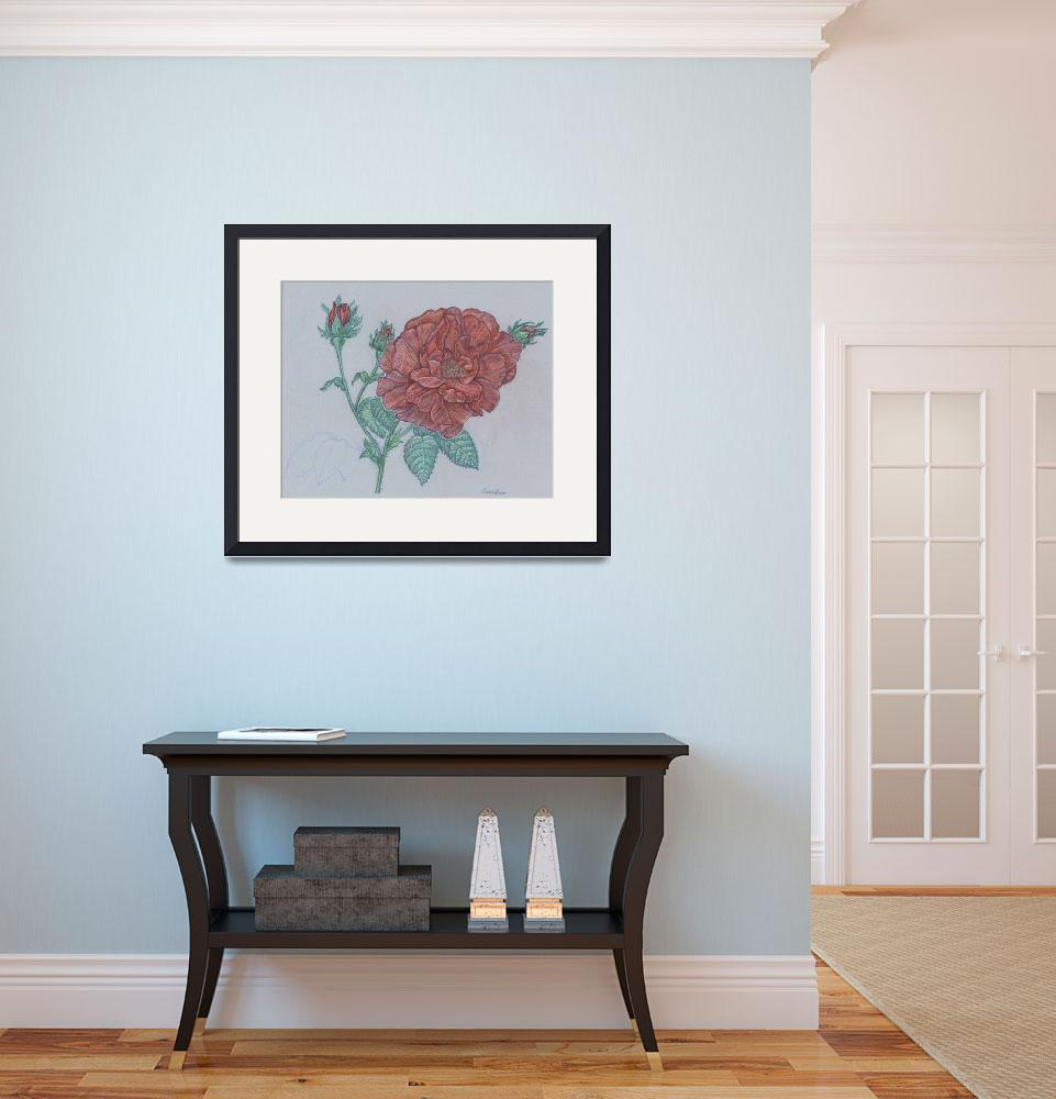 """""""Red English Rose&quot  (2008) by creativebrains"""