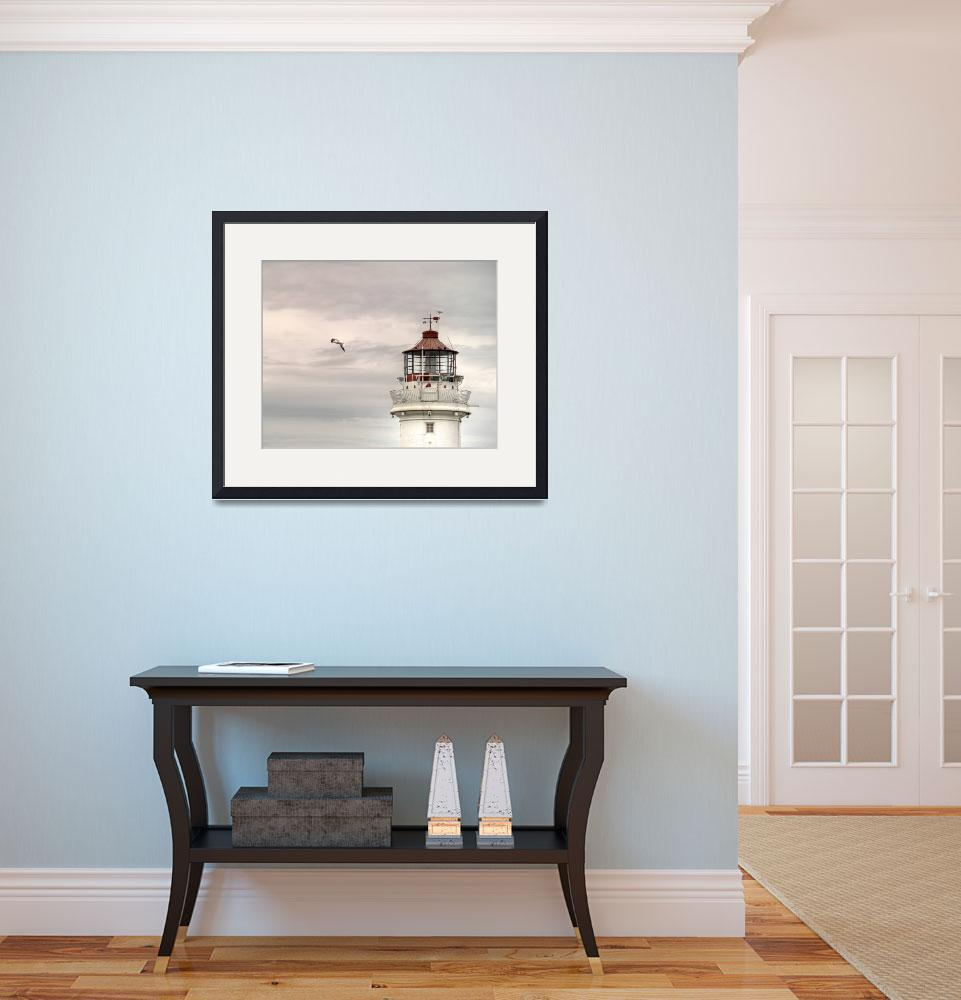 """""""Lighthouse Top with Seagull""""  (2008) by duneprints"""