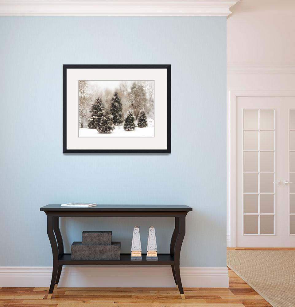 """""""Snow Pines""""  (2009) by JessicaJenney"""