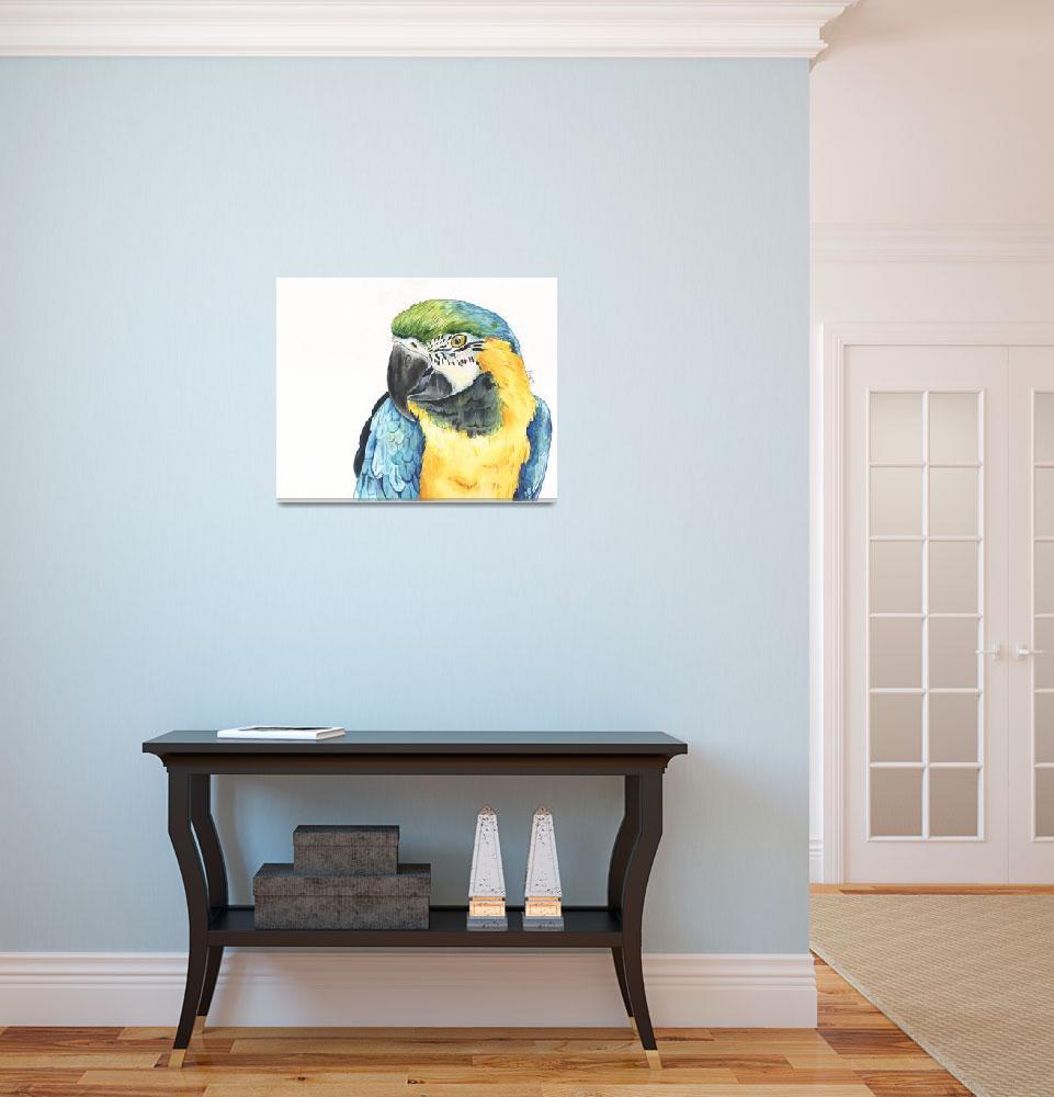 """Tango the Silly Spokesbird Macaw&quot  (2014) by Designomel"