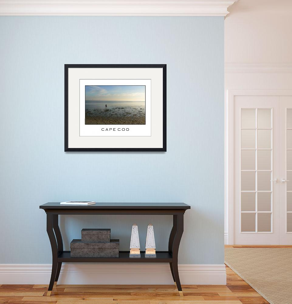 """""""Solitary Beachcomber - Cape Cod&quot  (2009) by orincassill"""
