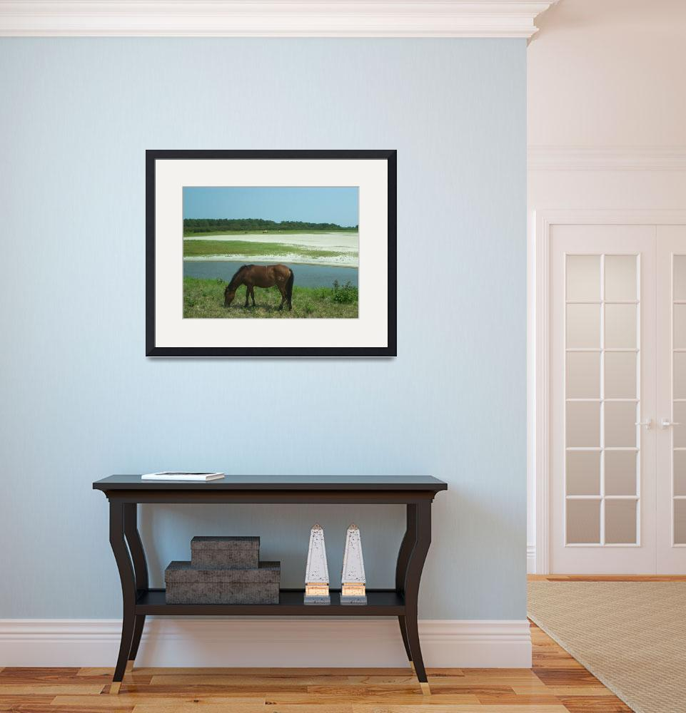 """""""Wild Chincoteague Ponies&quot  (2007) by wildpony"""