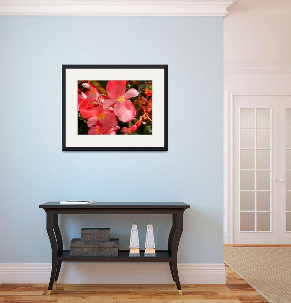 """""""Begonia Flower&quot  (2010) by jannelli"""