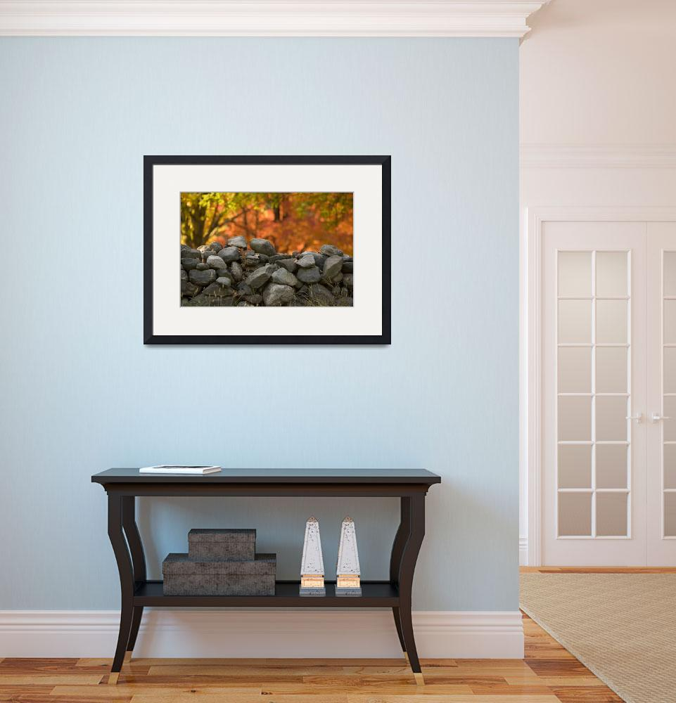 """""""Stone Wall&quot  (2009) by robophoto"""