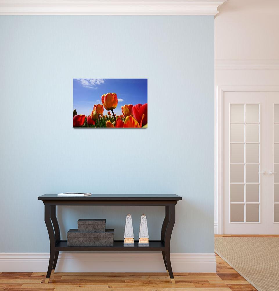 """Tulips Flowers Meadow art prints Spring Gardens""  (2017) by BasleeTroutman"