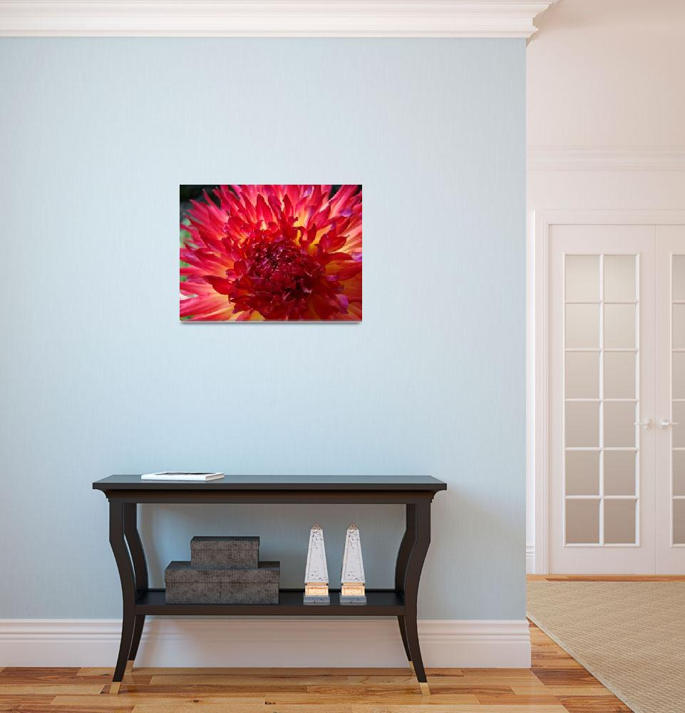 """""""CHRISTMAS GIFT GALLERY Red Purple Dahlia Flower""""  (2009) by BasleeTroutman"""