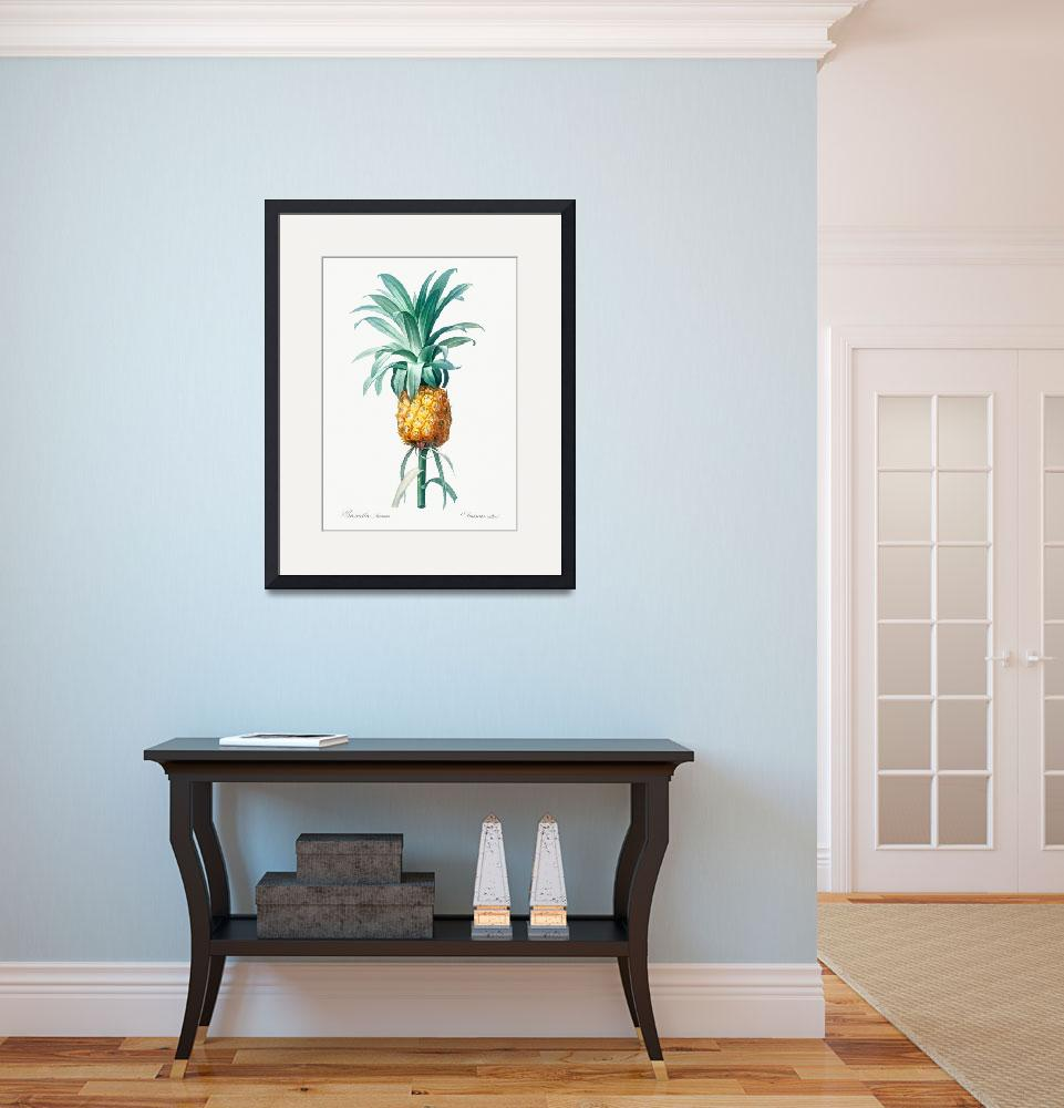 """Vintage Botanical Pineapple&quot  by FineArtClassics"