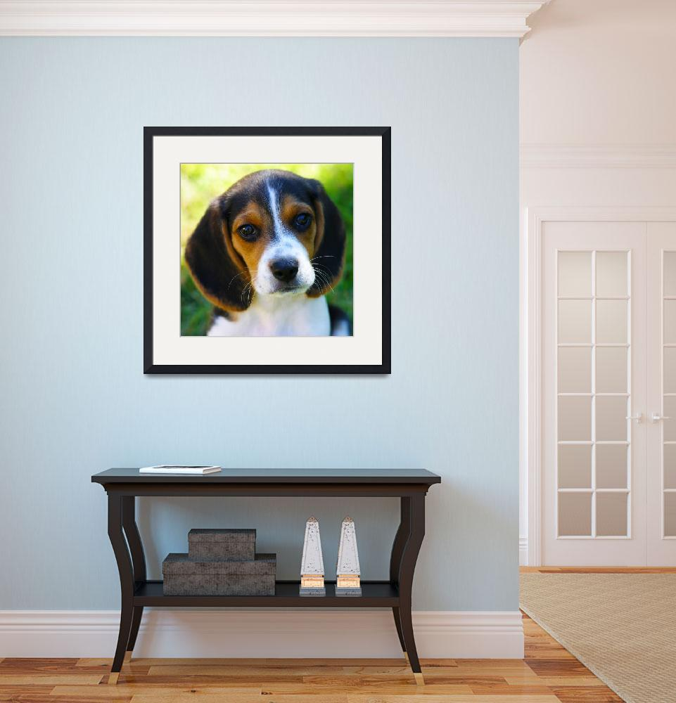 """Beagle Puppy&quot  (2015) by SharpArt"