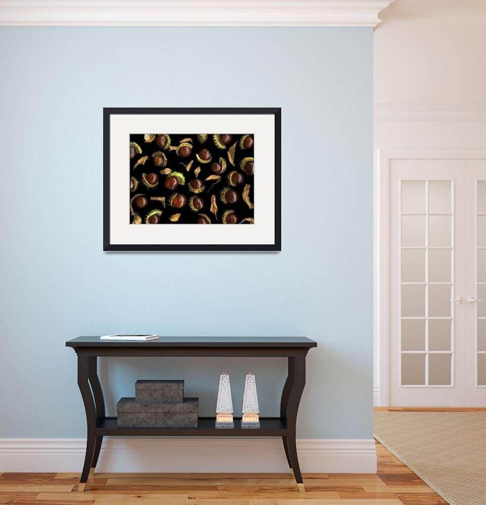 """""""Chestnuts&quot  (2013) by CSlanecPhoto"""