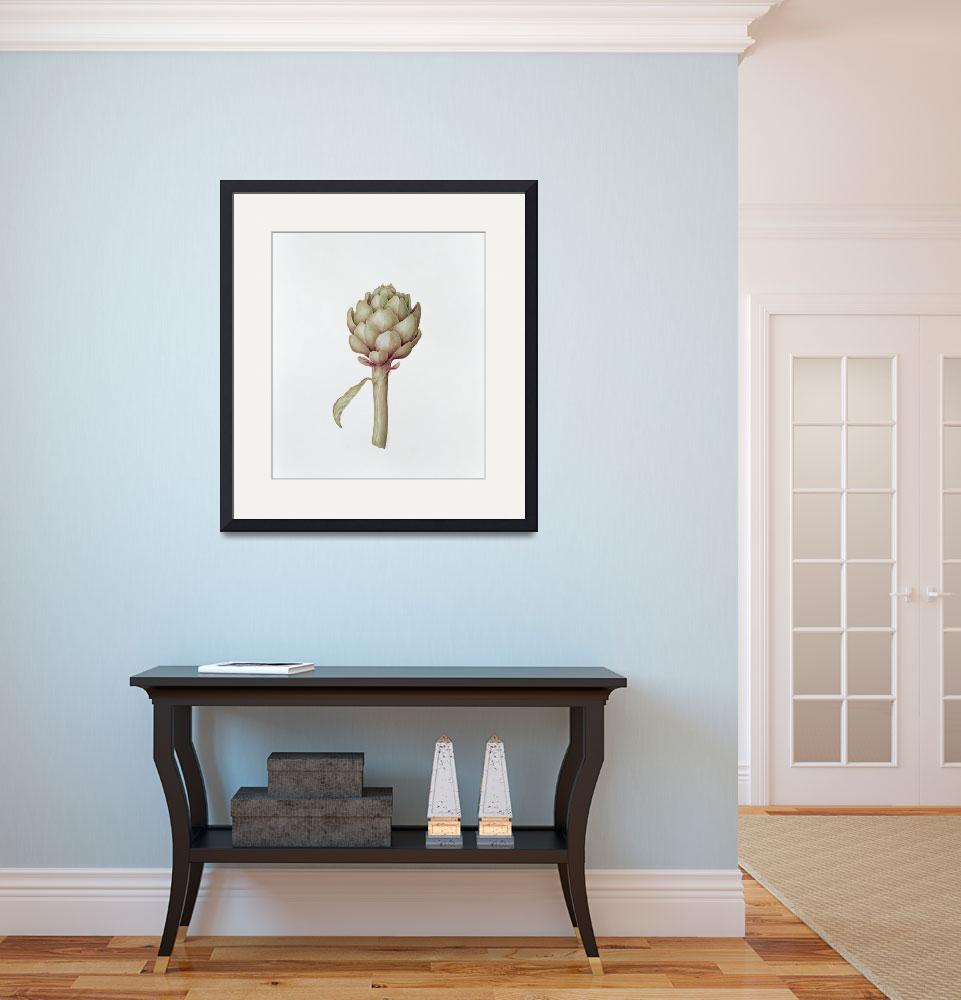 """""""Artichoke, 1999 (pencil on paper)&quot  by fineartmasters"""