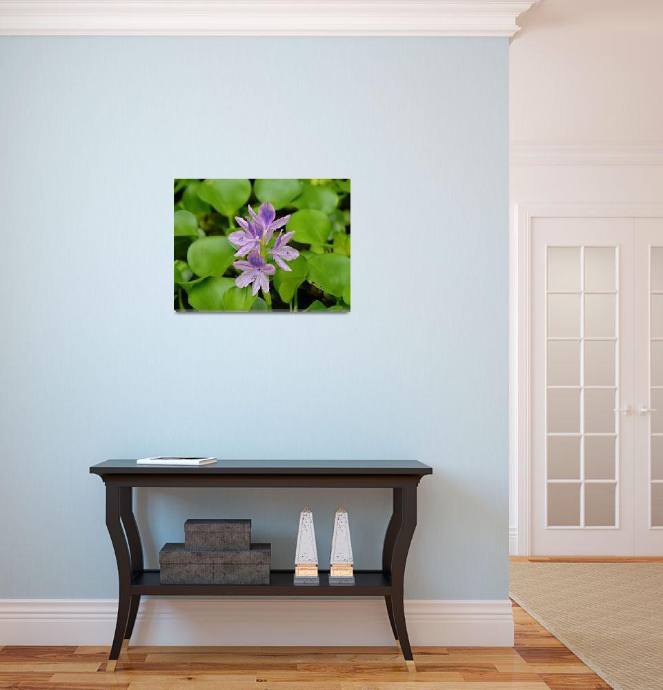 """Lady Hyacinth&quot  (2015) by Happyhead"