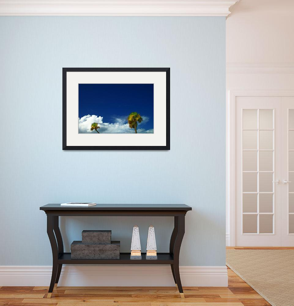 """""""Two Palms and a Lot of Blue""""  (2008) by ChrisCrowley"""