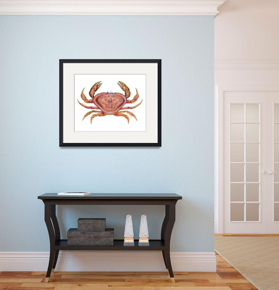 """Dungeness Crab (Cancer magister)&quot  (2006) by edenart"