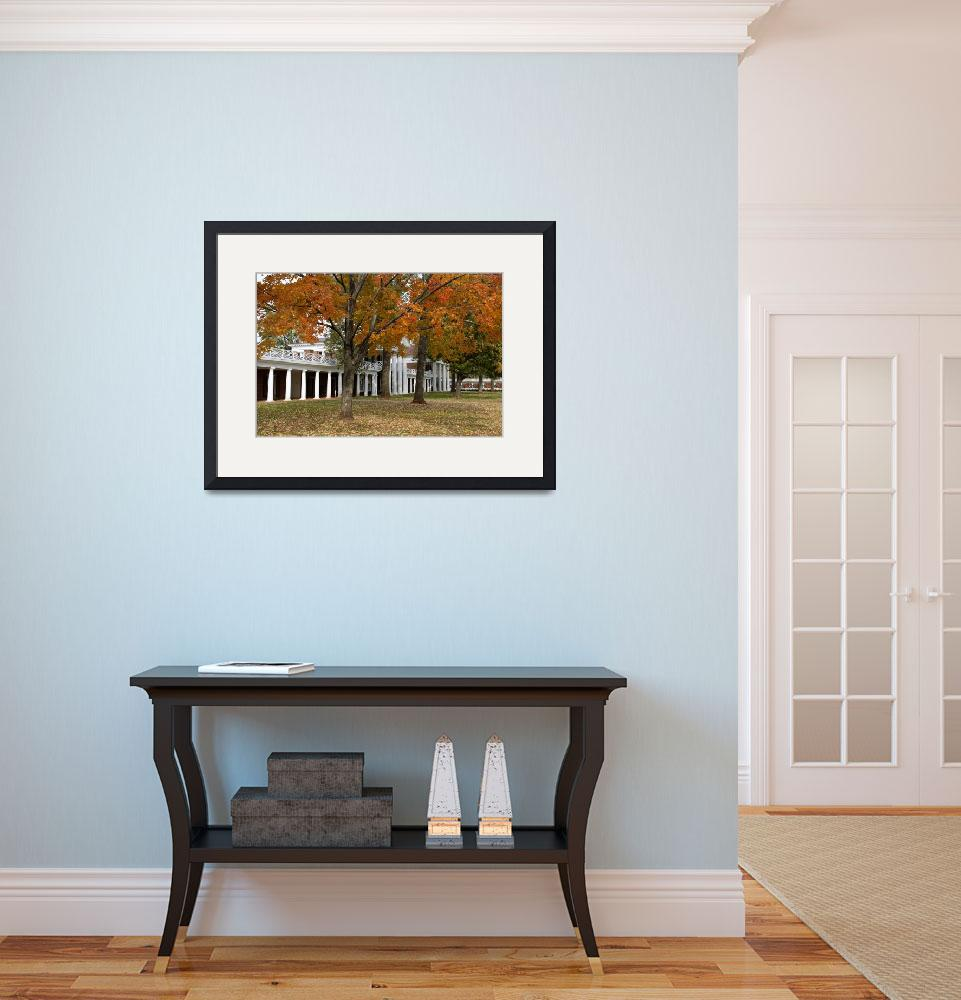 """""""The Lawn During Fall, University of Virginia&quot  (2003) by fineartphoto"""