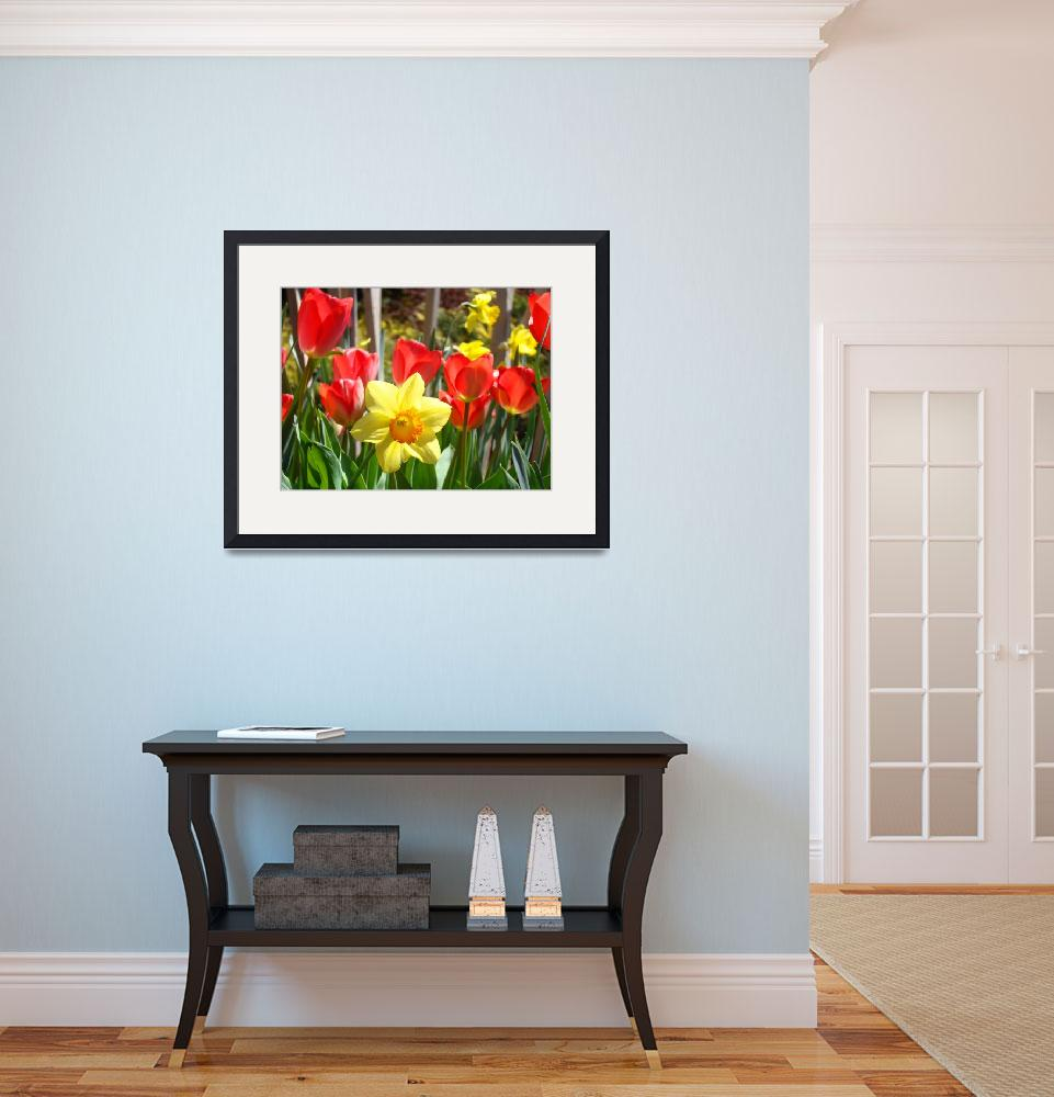 """""""Spring Daffodils Flowers Garden Red Tulips&quot  (2014) by BasleeTroutman"""