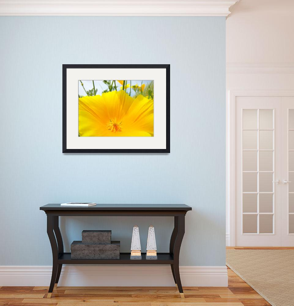 """Big Poppy Flower art prints Poppies Macro Floral&quot  (2014) by BasleeTroutman"