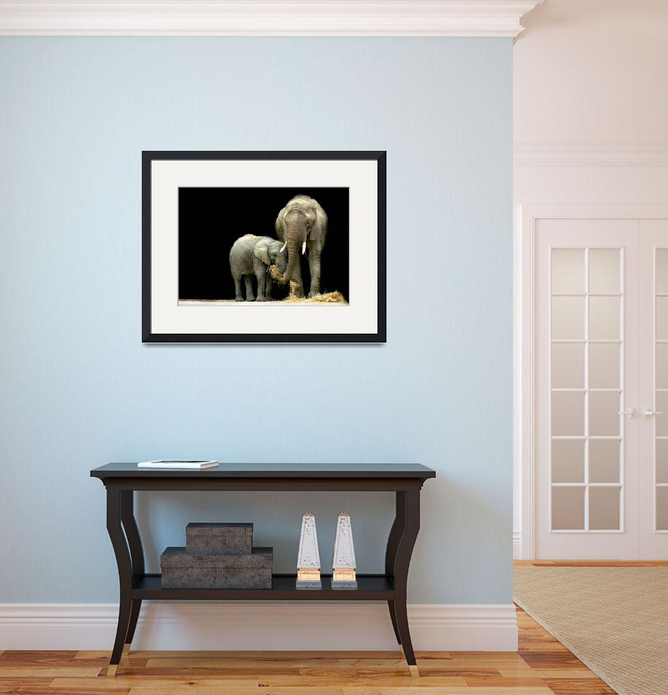 """""""African Elephants with baby....""""Feeding Time""""""""  (2009) by StephieButler"""
