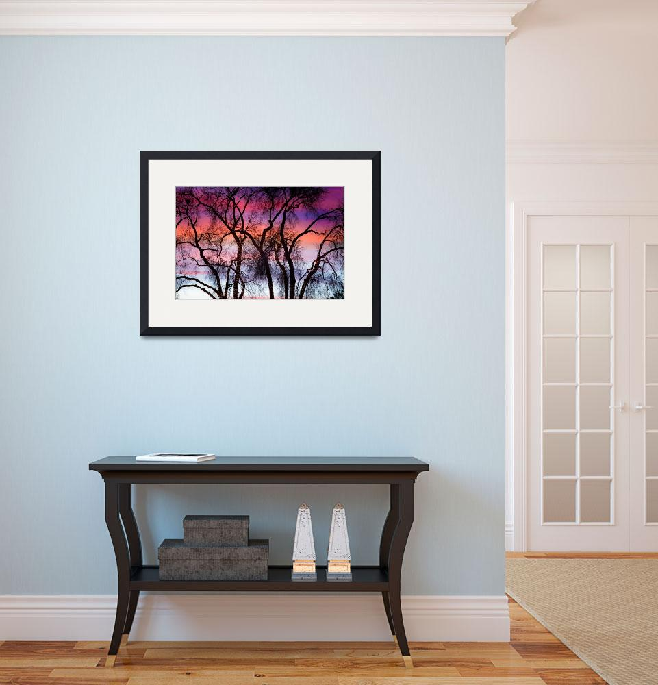 """""""Colorful Silhouetted Trees 9&quot  (2012) by lightningman"""